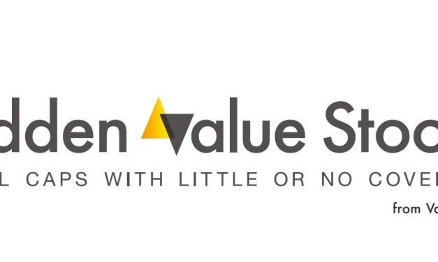 HVS 3Q19 Unique Small Cap Ideas: Featuring Tollymore and Rowan Street